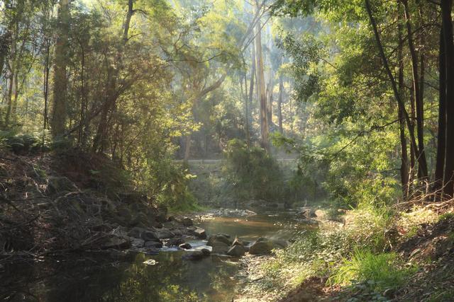 Julia creek contamination