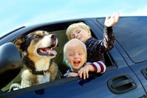 children and dog leaning out of a car window