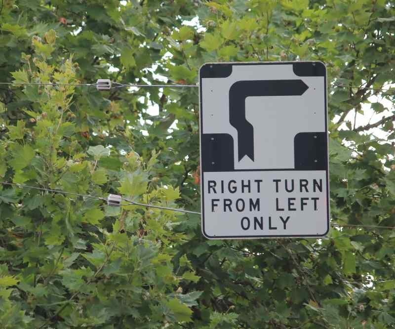 Melbourne hook turn sign in trees | Shine Lawyers